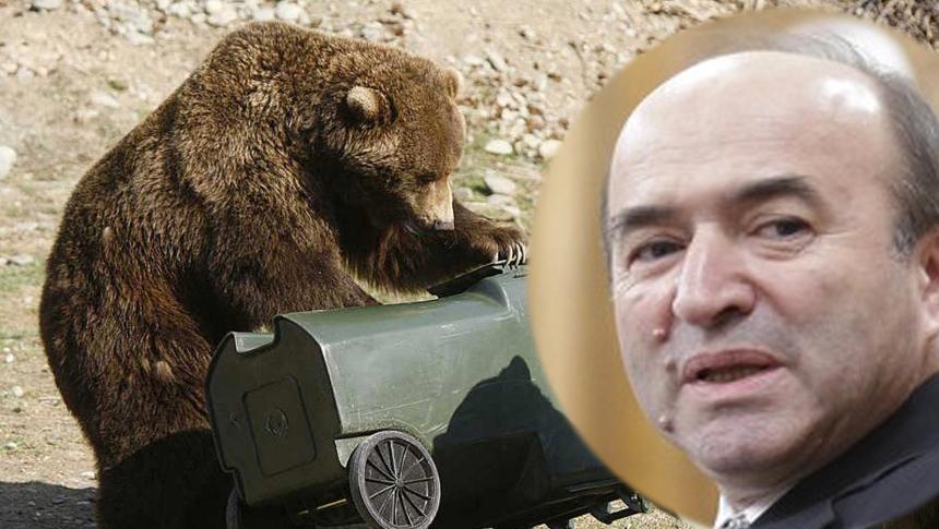Un urs era să-l mănânce pe Tudorel Toader crezând că e gunoi!