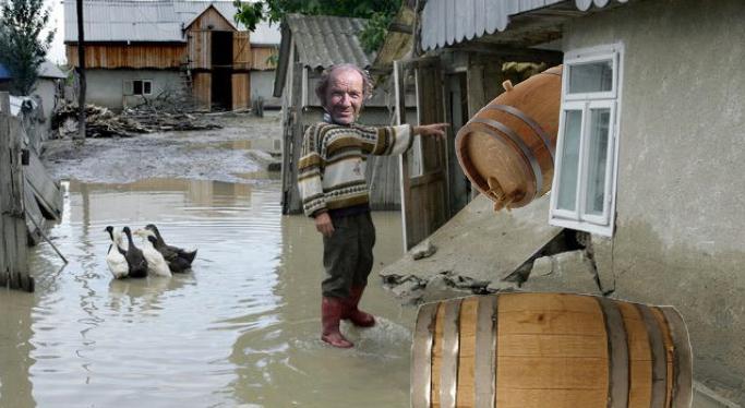 Vasluienii, îngrijorați de schimbările climatice: Au început să vină calamitățile înainte să se facă vinul!