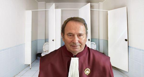 Veceul Curții Constituționale va deveni a treia cameră a Parlamentului!